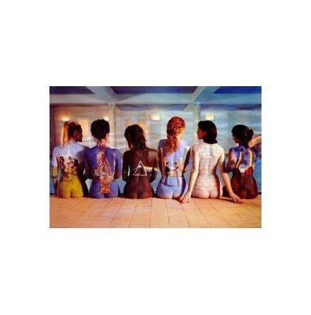Pink Floyd - Back Catalog Micro Raschel Fleece Throw